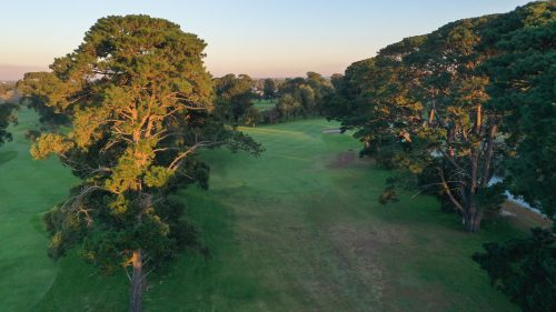Rossdale-Hole-17-317m-Tee-Shot