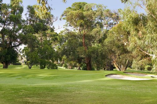 Rossdale Hole 16 163m Green